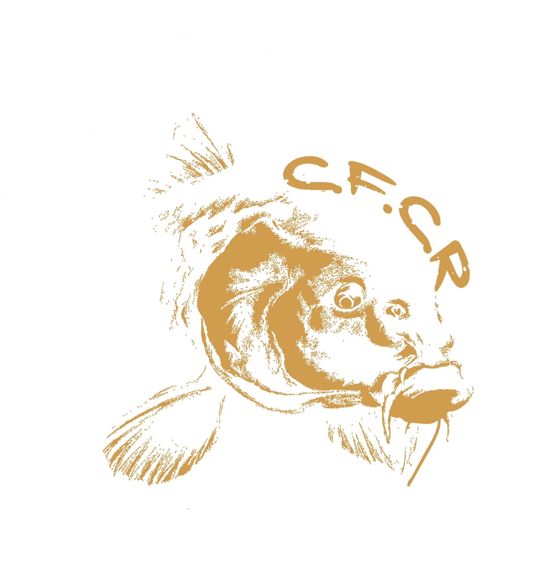 logo carpfishing spalla